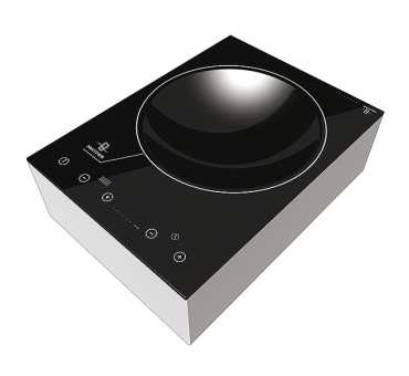 MATFER - Wok induction - 240322