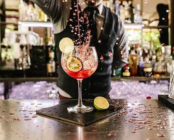 Matériel Professionnel pour Bar, Snacking et Hôtellerie